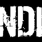 Logo_SCHANDPFAHL_01_weiß